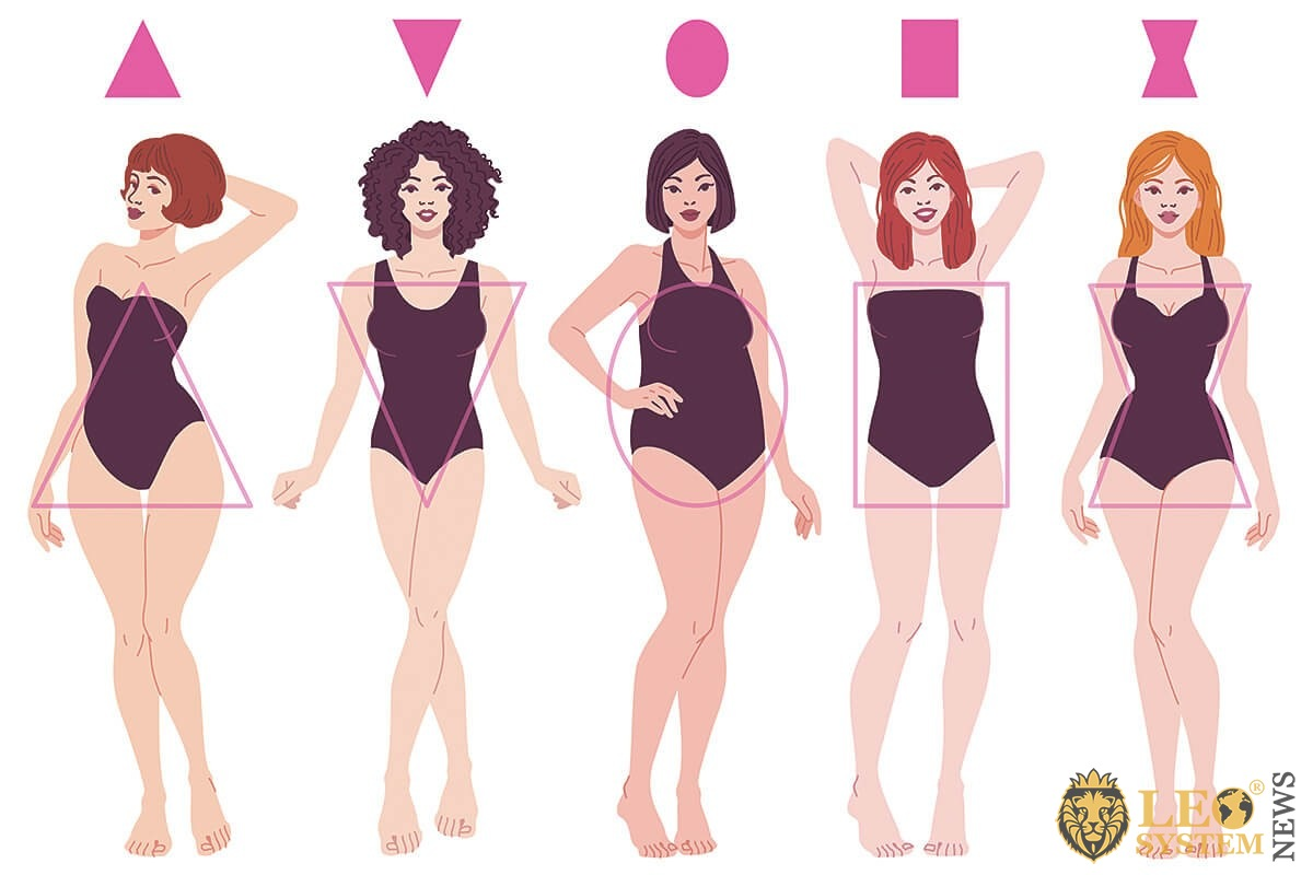 Diagram of the types of figures in women