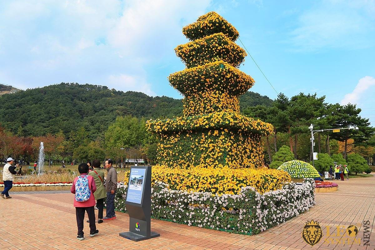Chrysanthemums festival in Yangsan city