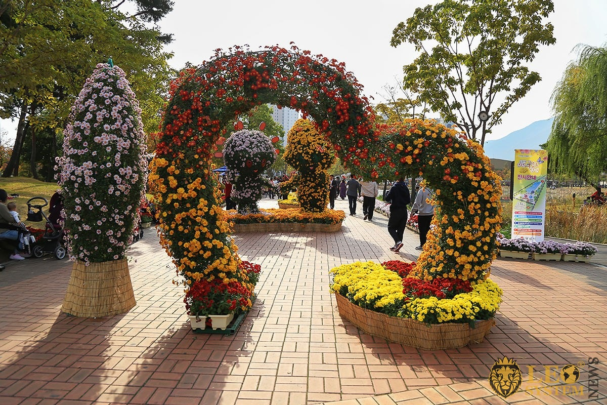Large flower bed of chrysanthemums in the shape of a heart arch
