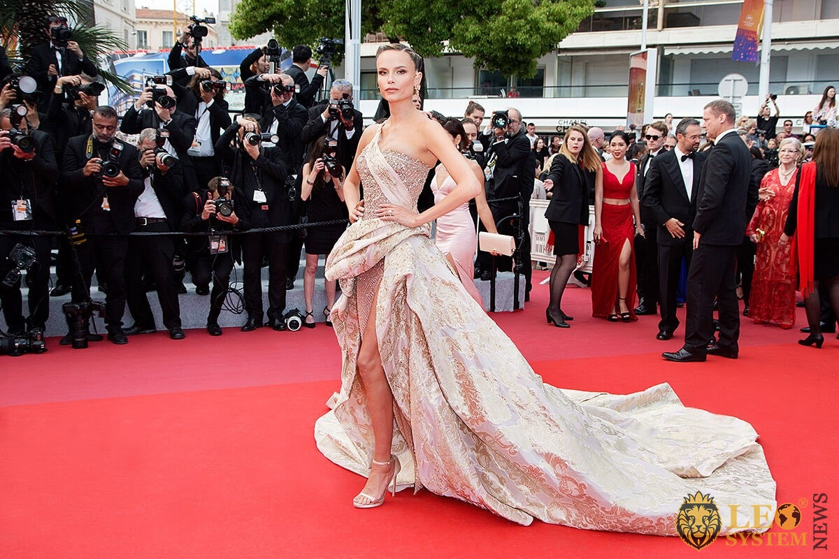 Model Natasha Poly in a beautiful dress on the red carpet