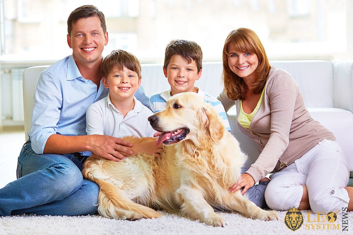 Cheerful family plays at home with a big dog