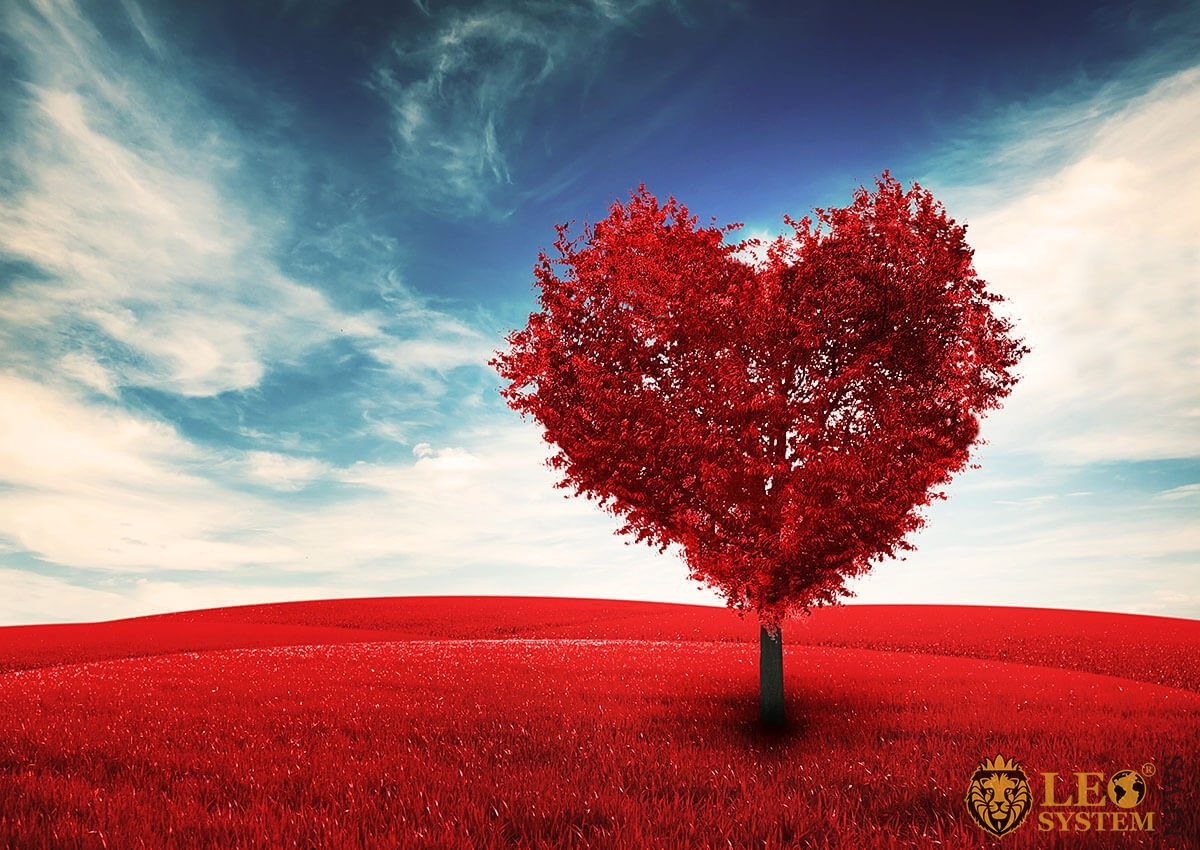 Image of a field with a red tree in the form of a heart