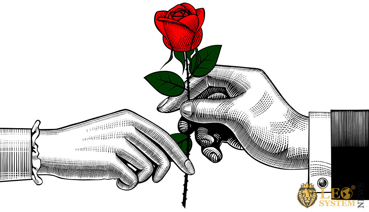Image of male and female hands with a flower in their hands